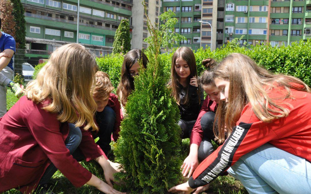 KosovaLive mbjell 25 fidanë për Ditën Ndërkombëtare të Pyjeve