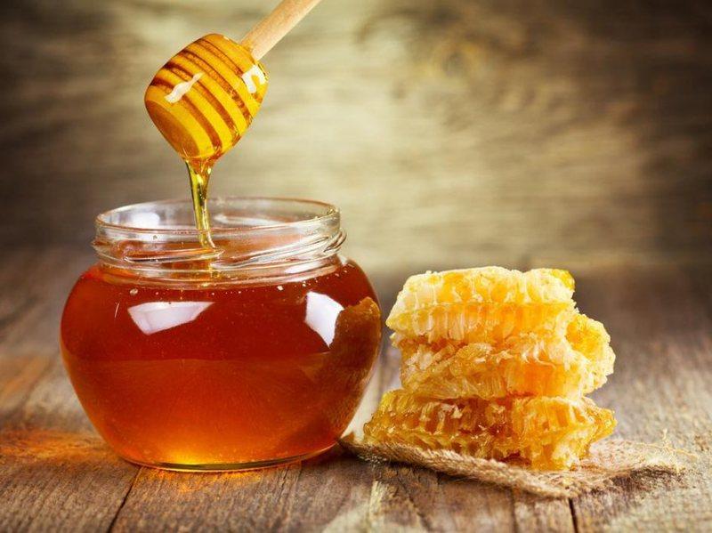 Kur mjalti të jep bukë