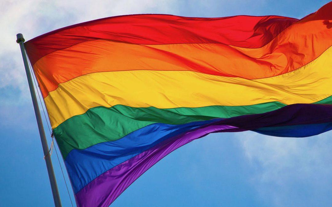 LGBT po thyen heshtjen, dalëngadalë del nga anonimiteti