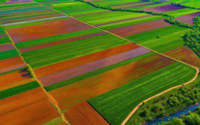 """Bujqësia ende në kërkim të certifikimit si sektor që """"punëson e prodhon"""""""